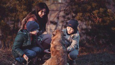 I figli di genitori separati? Sempre più contesi
